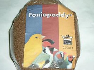 Foniopaddy 1