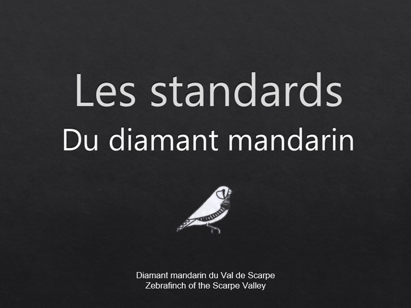 Les standards du diamant mandarin1 jpg